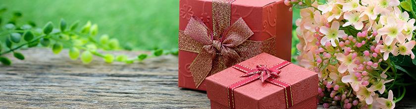geschenke um 50 euro sinnvolle sch ne geschenkideen purenature. Black Bedroom Furniture Sets. Home Design Ideas